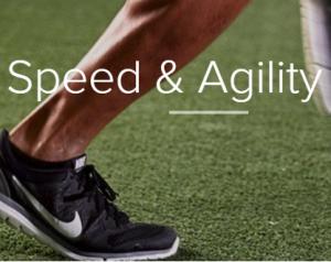 Speed & Agility Turf